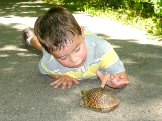 Kaden  turtle at Burr Oak Woods
